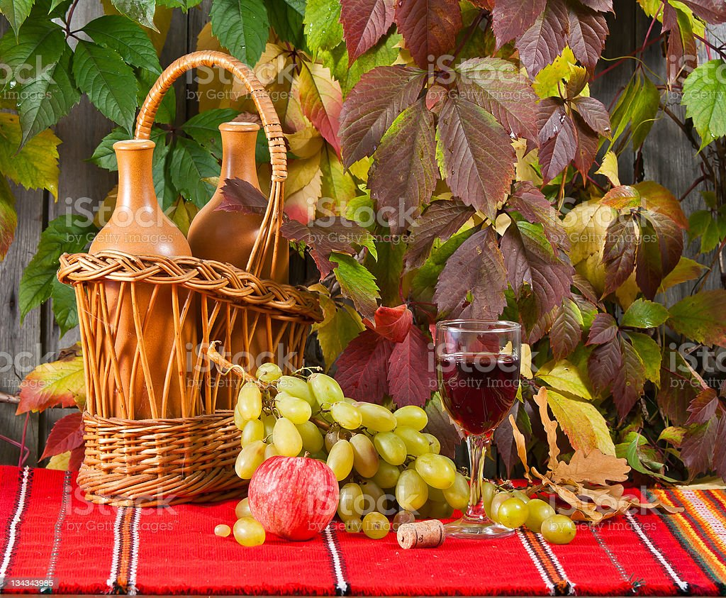 Vine and grape stock photo