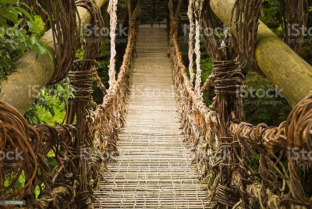Vine Bridge stock photo