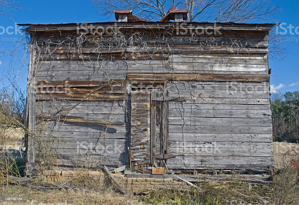 Vine Covered Shack royalty-free stock photo