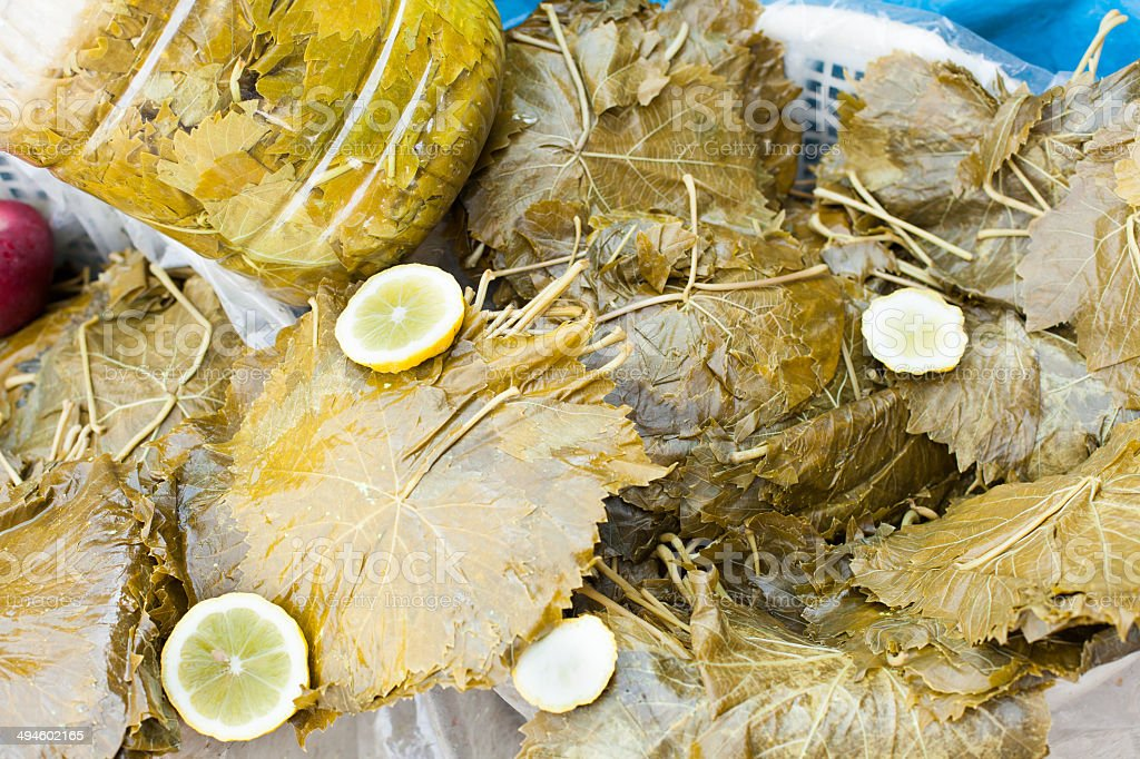 vine leaves for cooking stock photo