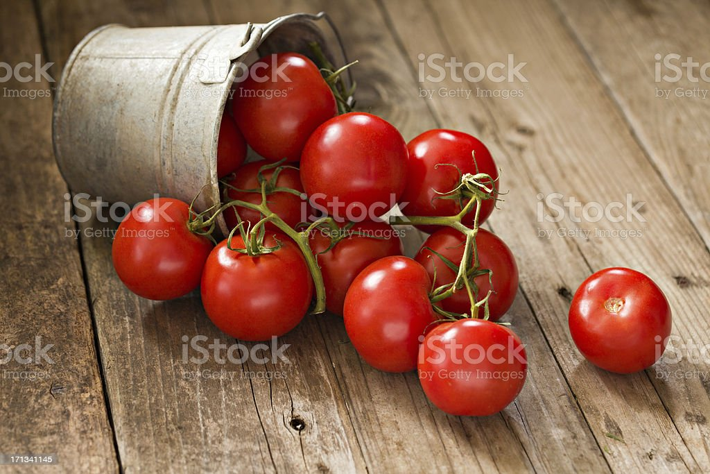 Vine Ripe Tomatoes In A Bucket stock photo
