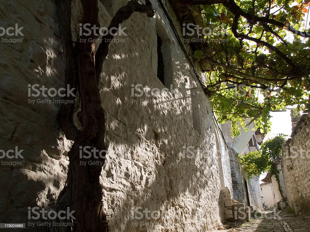 Vine roof royalty-free stock photo