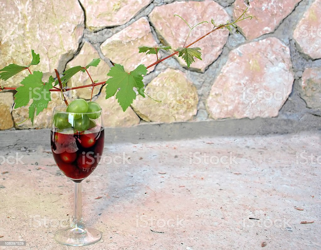 vine shoot over wine glass royalty-free stock photo