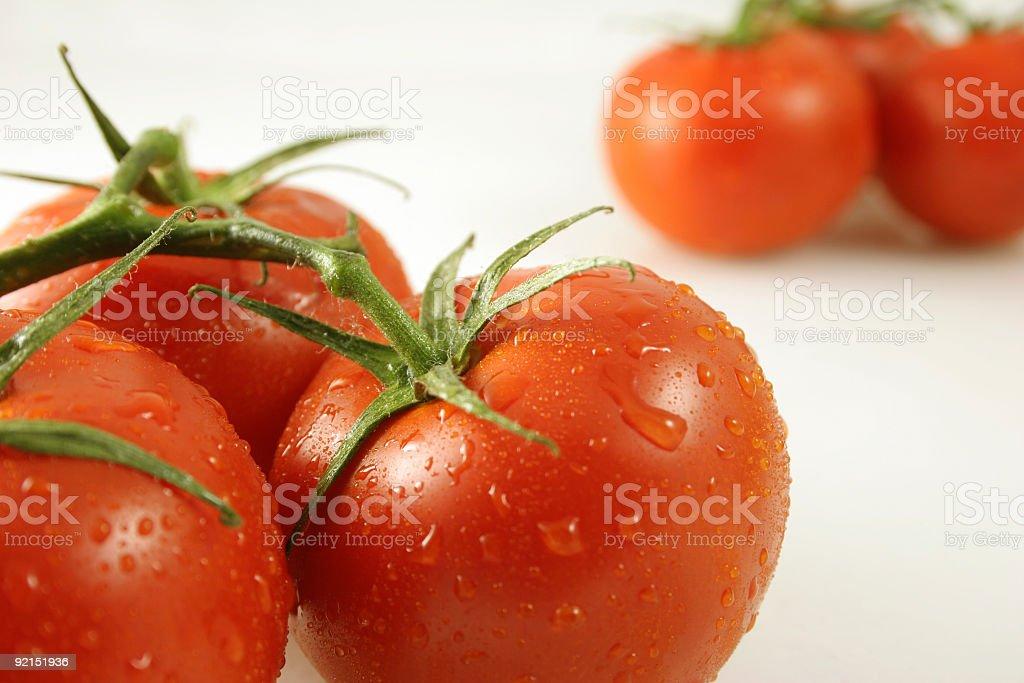 Vine Tomatoes Near and far stock photo