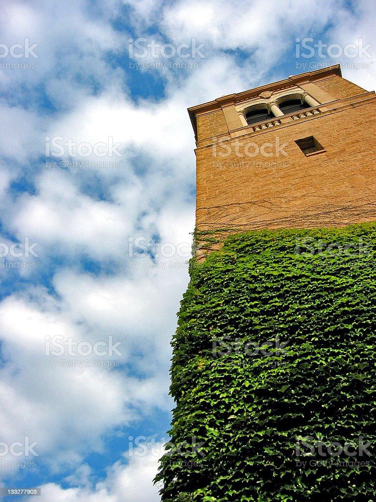 Vine Tower royalty-free stock photo