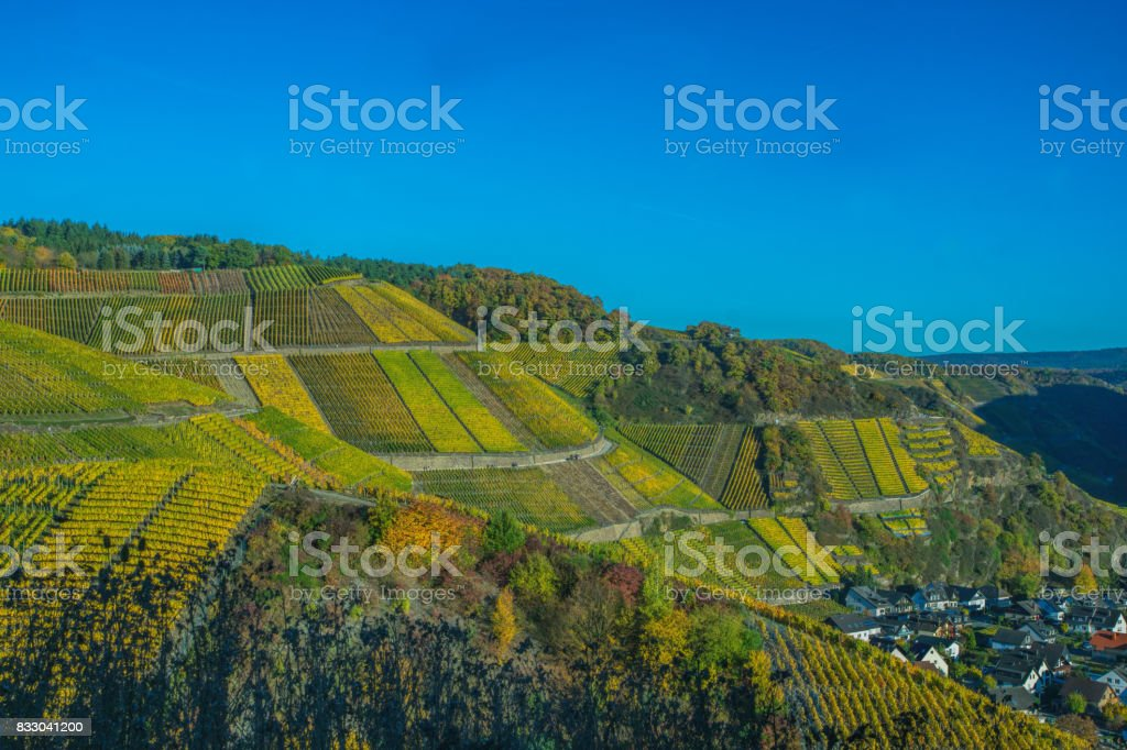 Vineplace Dernau stock photo