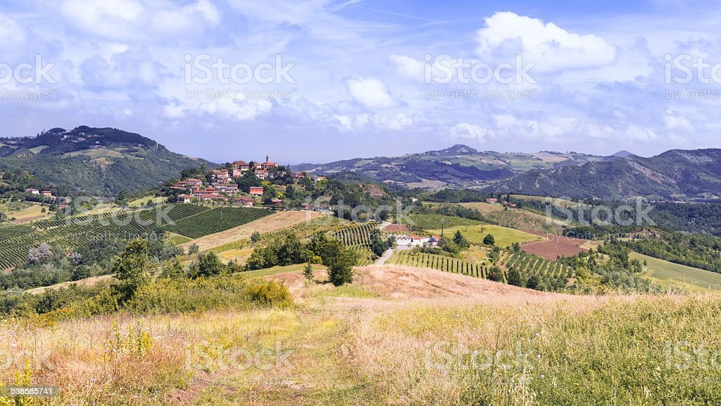 vinery tour in countryside in tuscany, italy stock photo
