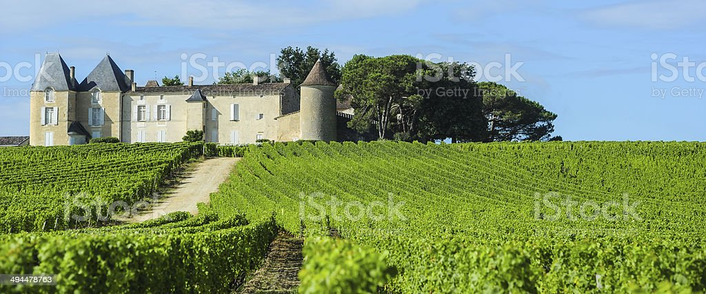 Vineyard and Chateau d'Yquem, Sauternes Region, Aquitaine, Franc stock photo