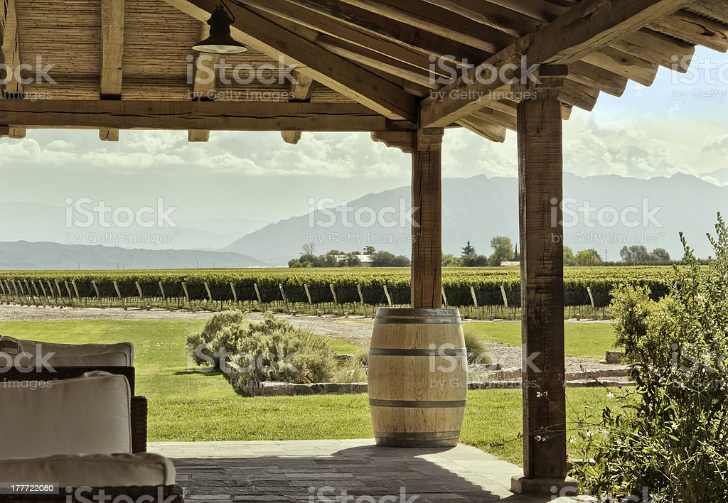 Vineyard and mountain, from the winery. royalty-free stock photo