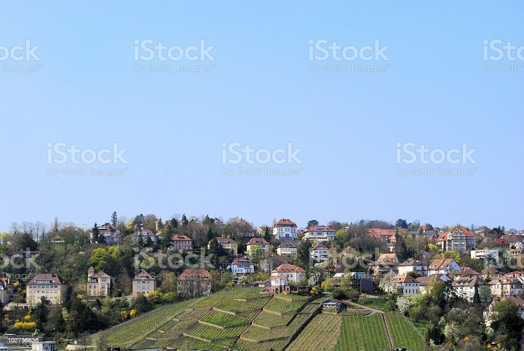 Vineyard and residential district in Stuttgart royalty-free stock photo