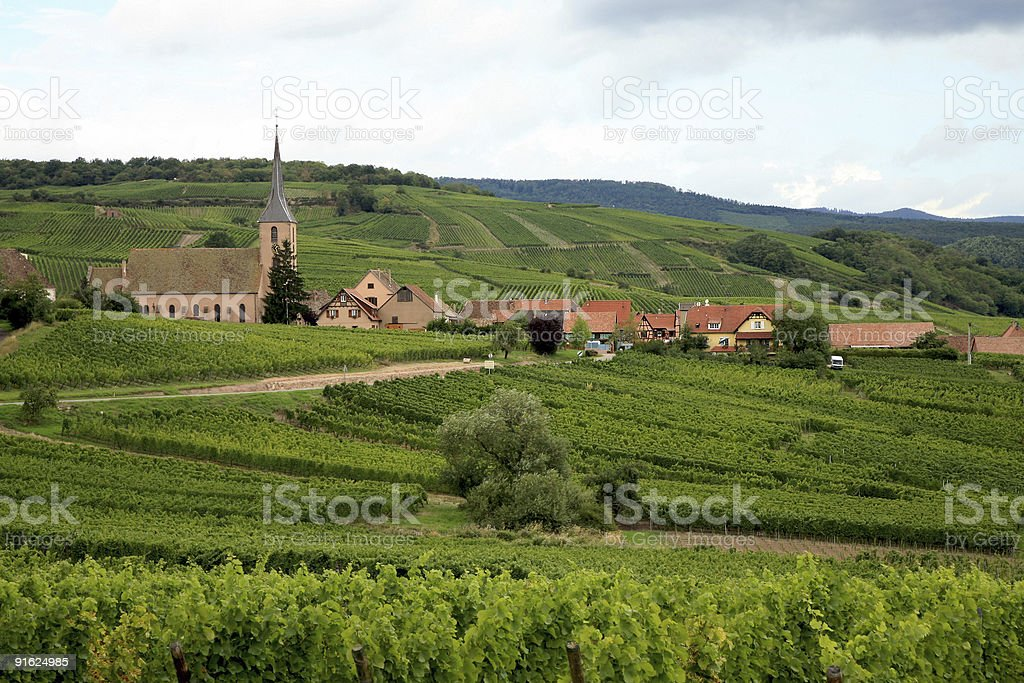 Vineyard and village in France - Alsace royalty-free stock photo