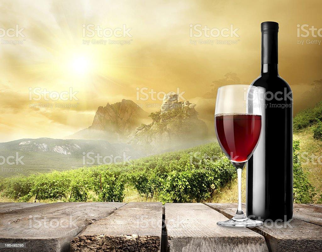 Vineyard and wine royalty-free stock photo
