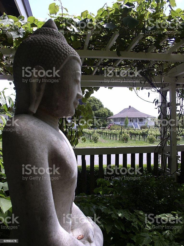 Vineyard Buddha royalty-free stock photo