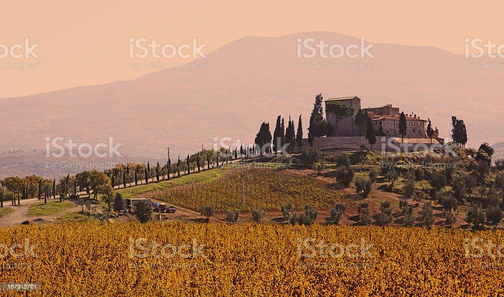Vineyard Castle in Tuscany royalty-free stock photo