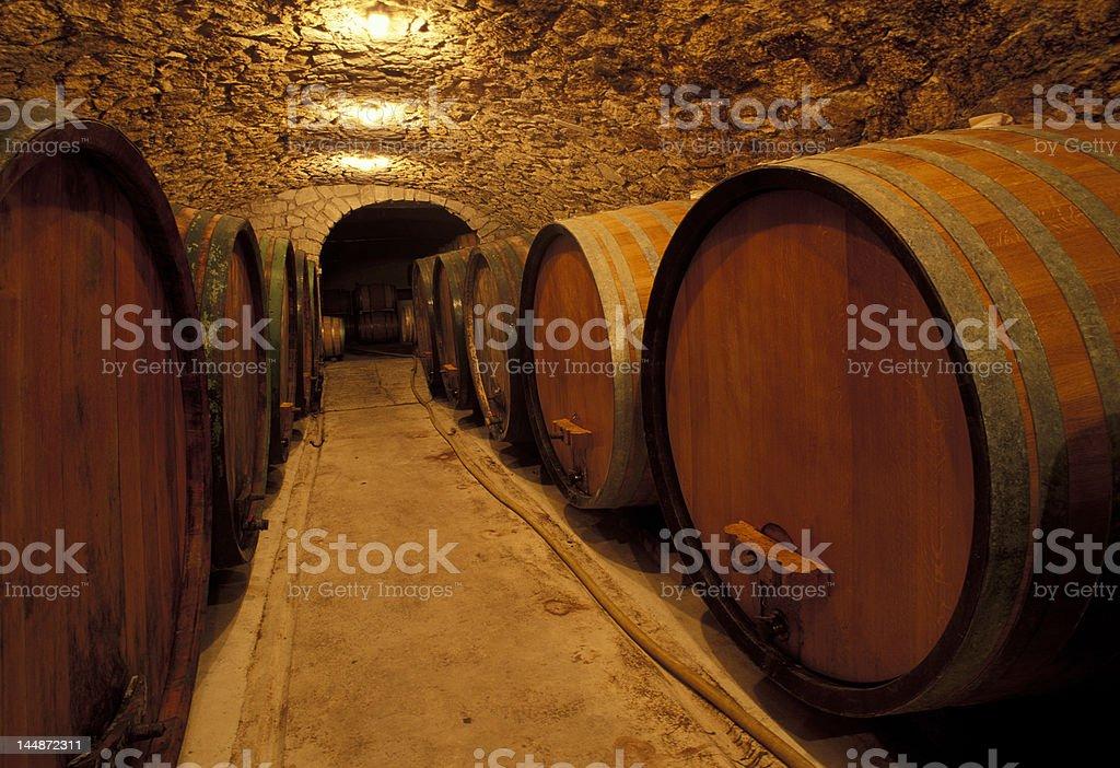 vineyard cellar stock photo