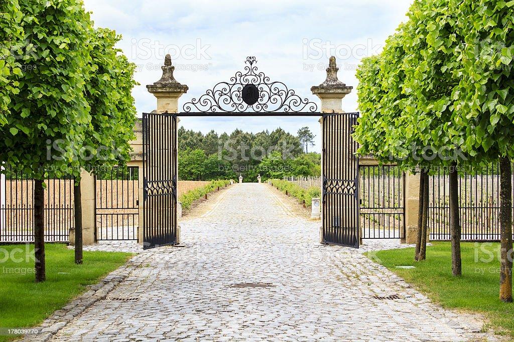 Vineyard entrance stock photo
