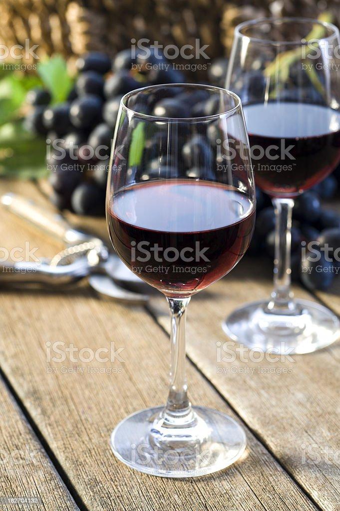 Vineyard Harvest royalty-free stock photo