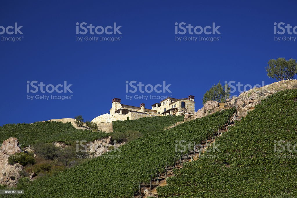 Vineyard Home on Hillside in California stock photo