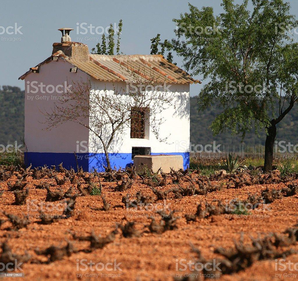 Vineyard ハットで Valdepañas、スペイン ロイヤリティフリーストックフォト