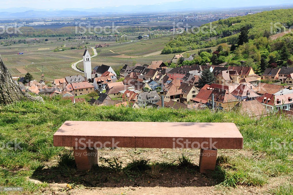 Vineyard of Alsace in Katzenthal stock photo