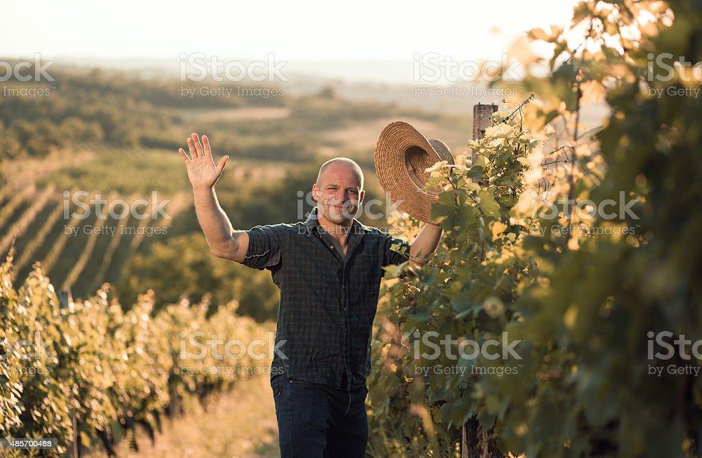 Vineyard owner salute stock photo