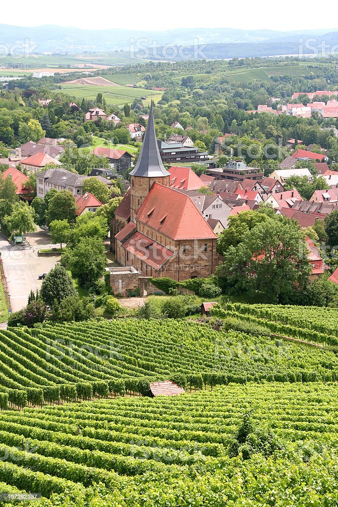 vineyard rows in a small german town stock photo