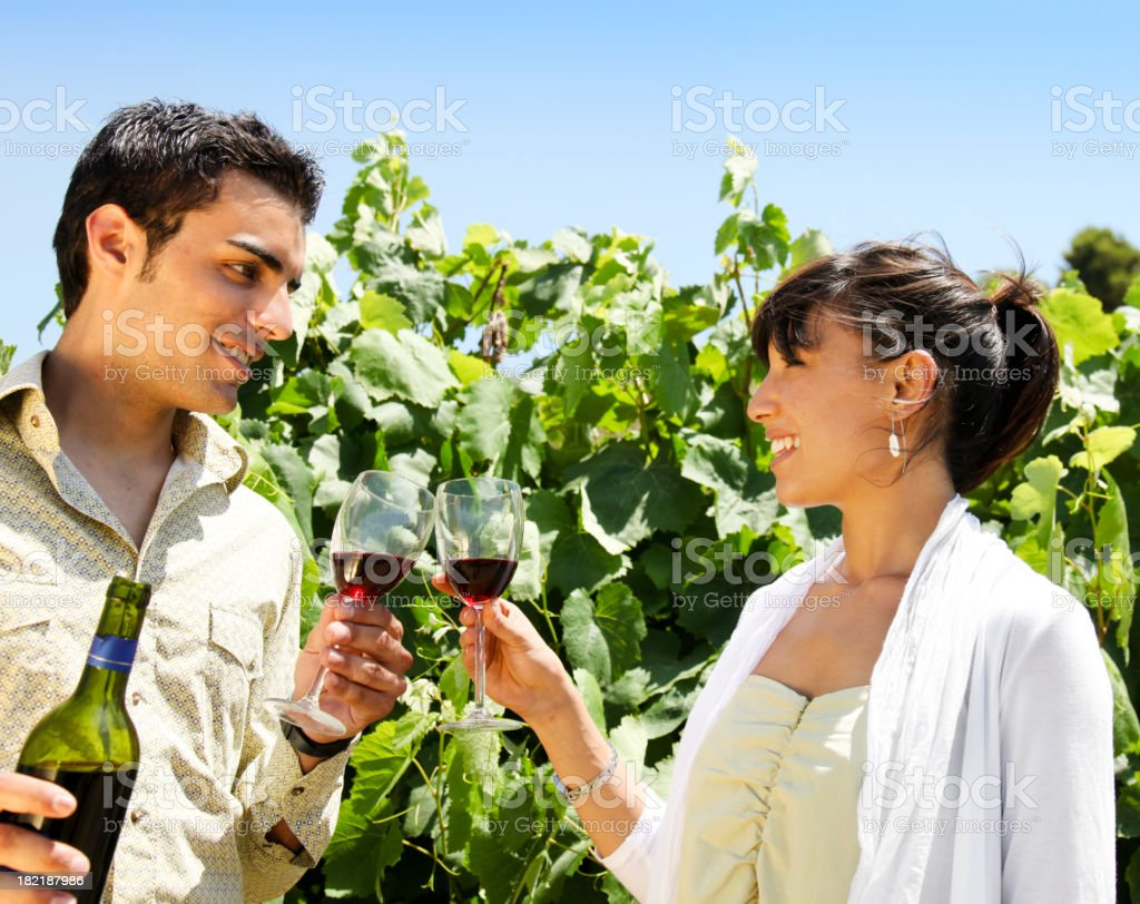 Vineyard toast royalty-free stock photo
