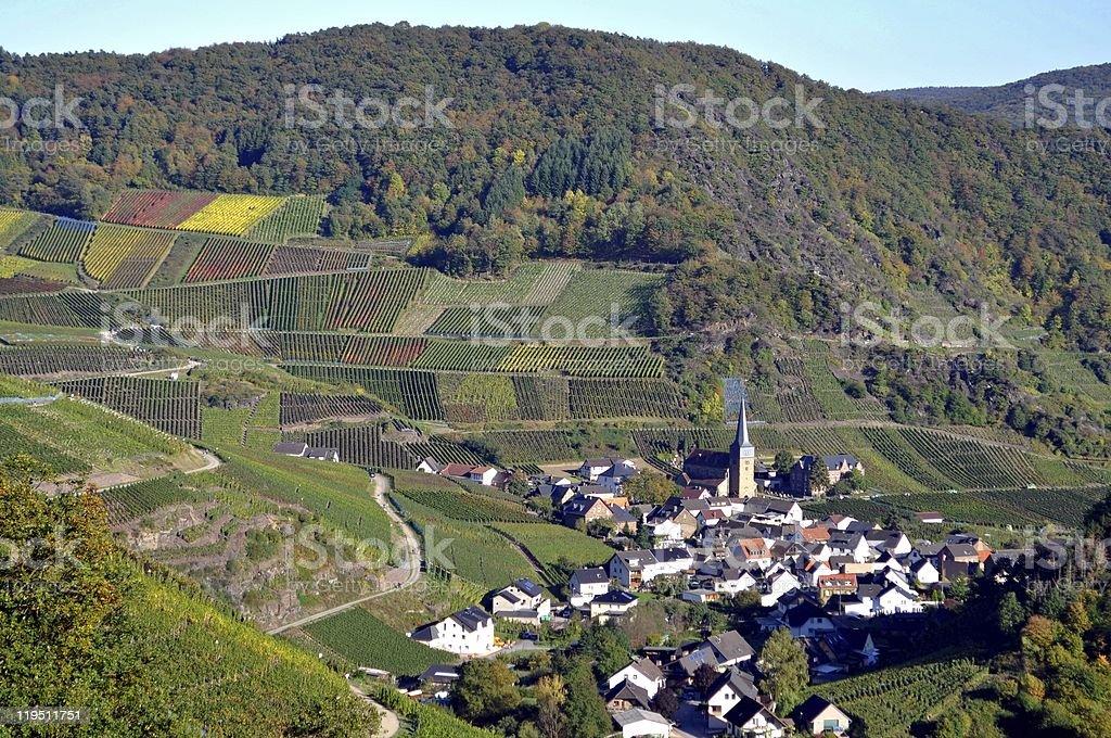 Winnica village w Jesień zbiór zdjęć royalty-free