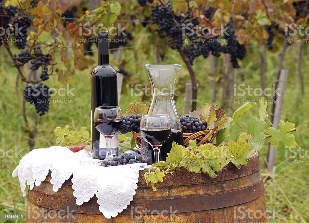 vineyard with grape and wine royalty-free stock photo