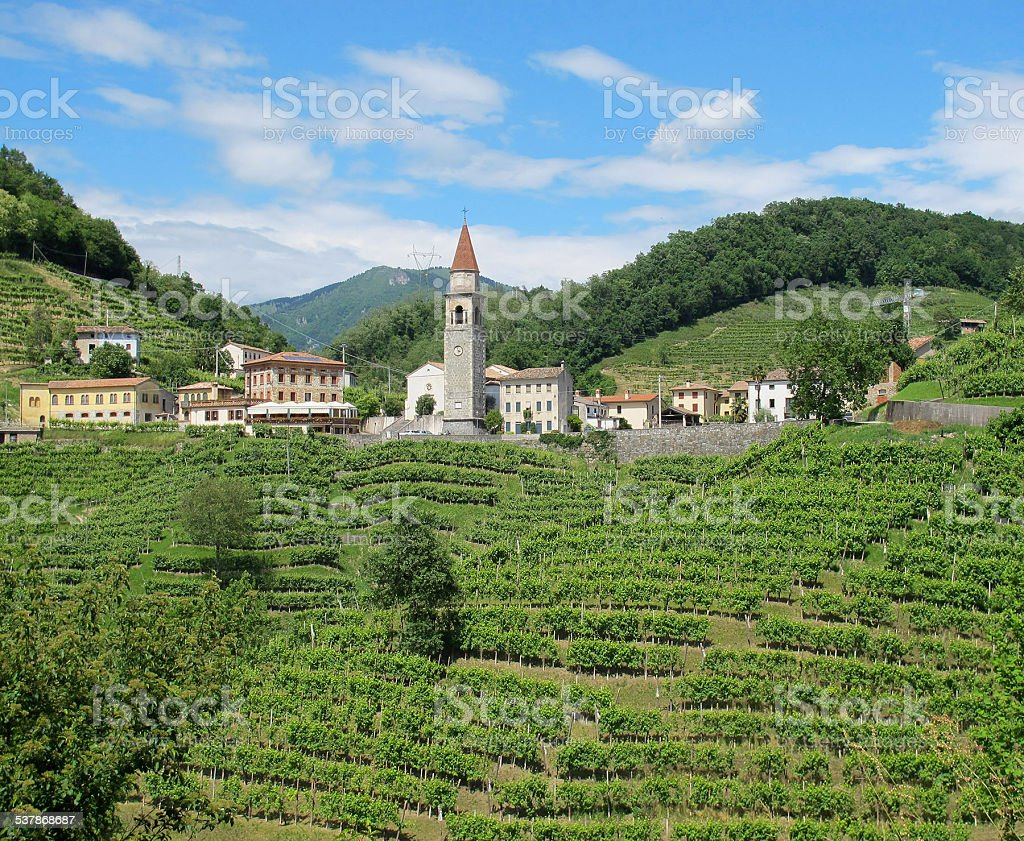 Vineyards and a village in the Italian Countryside stock photo