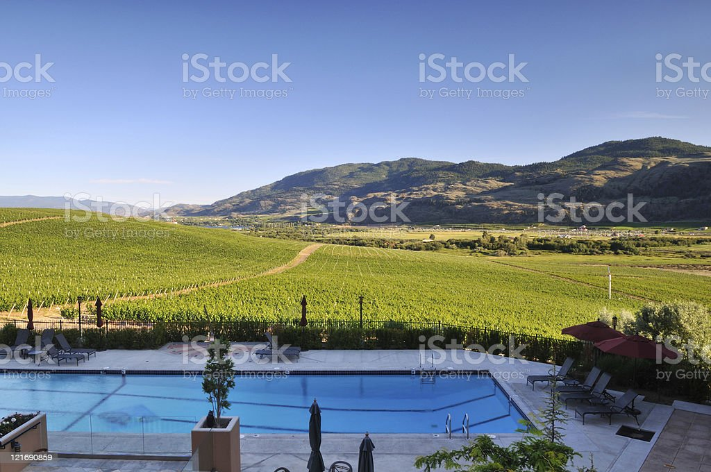 Vineyards and Orchards in Osoyoos, Okanagan Valley stock photo