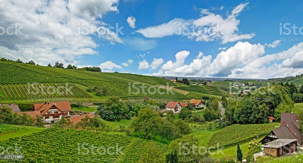 Vineyards and village in the Black Forest stock photo