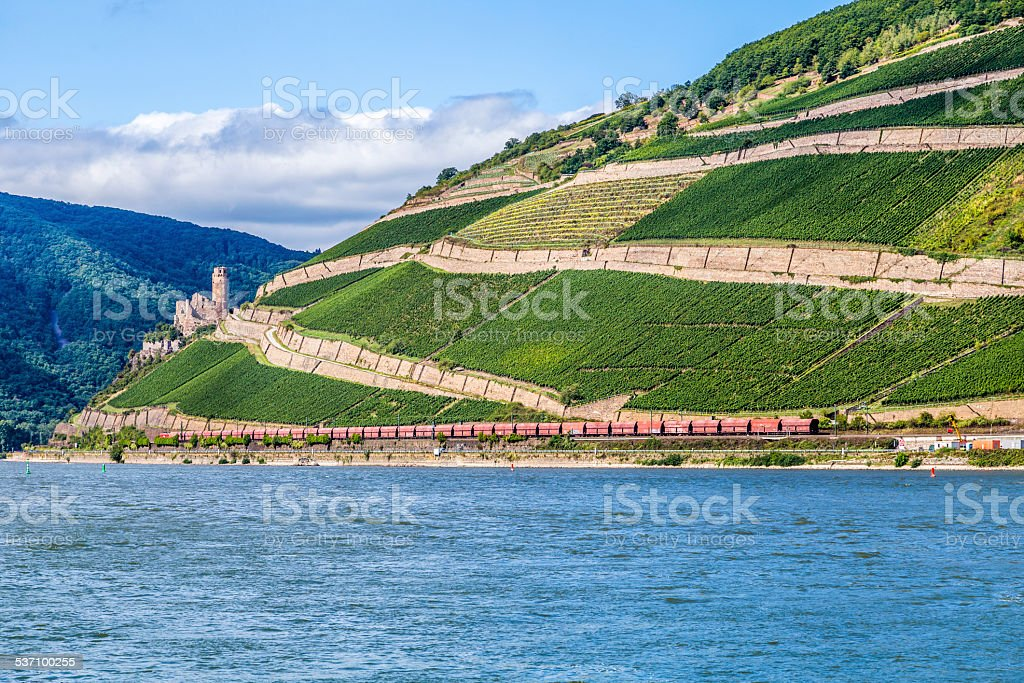 vineyards at  the rhine valley in Ruedesheim with train stock photo