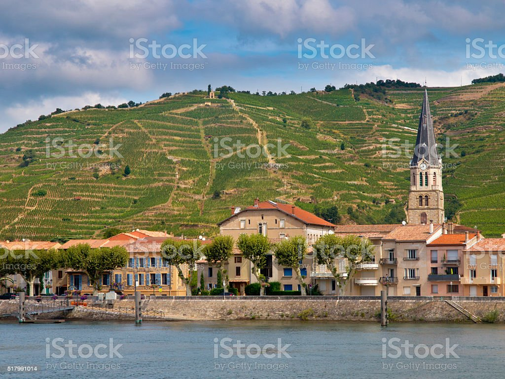 Vineyards in the Cote du Rhone France stock photo