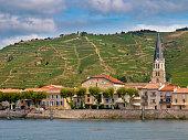 Vineyards in the Cote du Rhone France