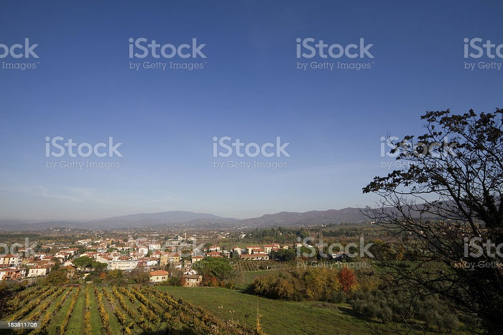 Vineyards in Tuscany royalty-free stock photo