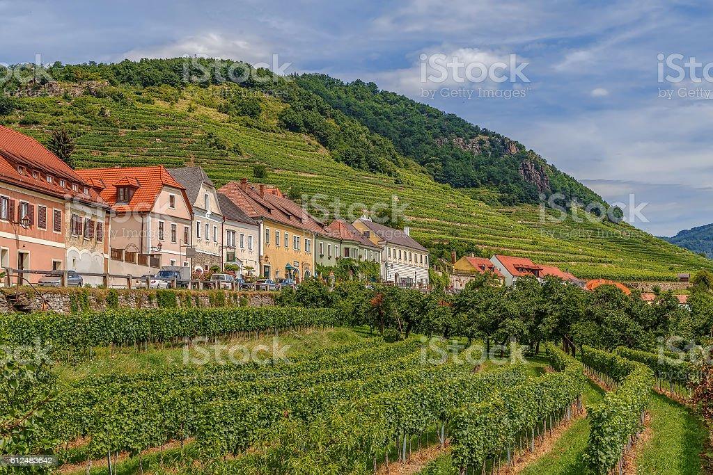vineyards in Weissenkirchen, Austria stock photo