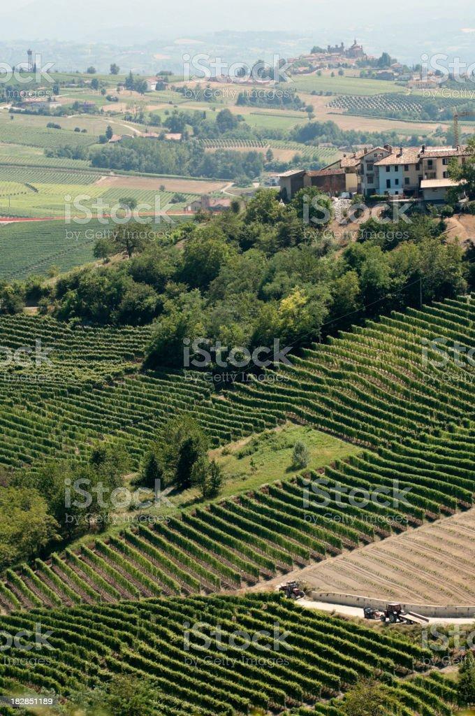 Vineyards near Barolo (Piemonte, Italy) royalty-free stock photo