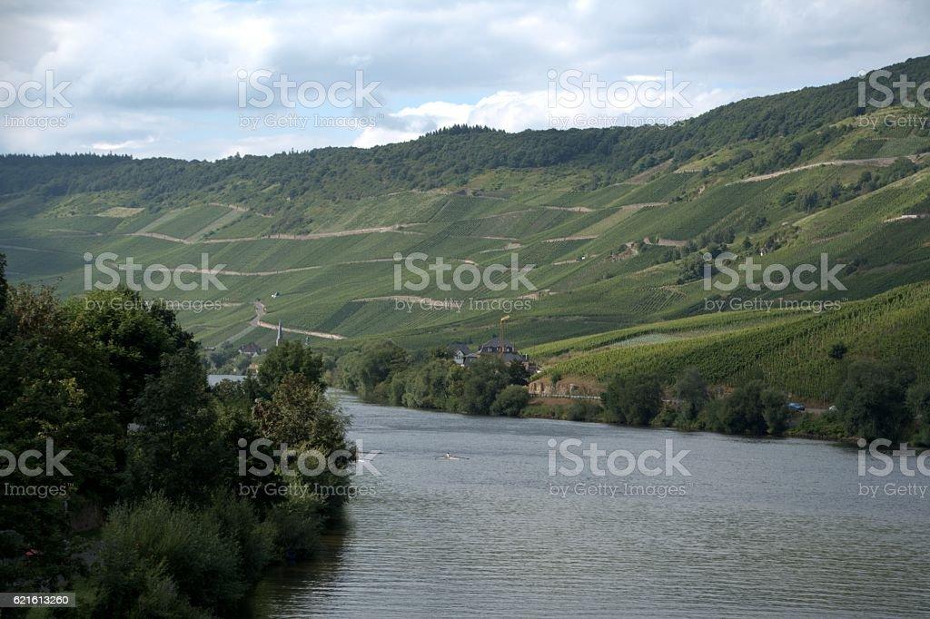 Vineyards on the Mosel river at Bernkastel-Kues, Rhineland-Palatinate, Germany stock photo