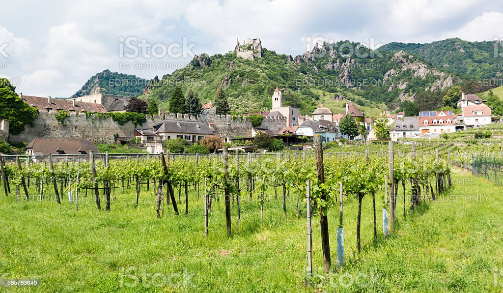 Vineyards, wall and old castle of Durnstein in Wachau, Austria stock photo