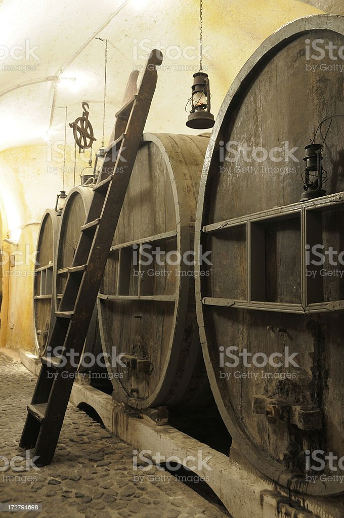 Viniculture royalty-free stock photo