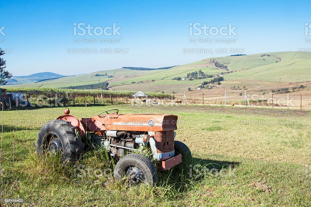 Vintage Abandoned  Tractor in Sugar Cane Farm Landscape stock photo