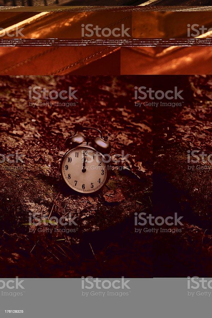 vintage alarm clock in the woods stock photo