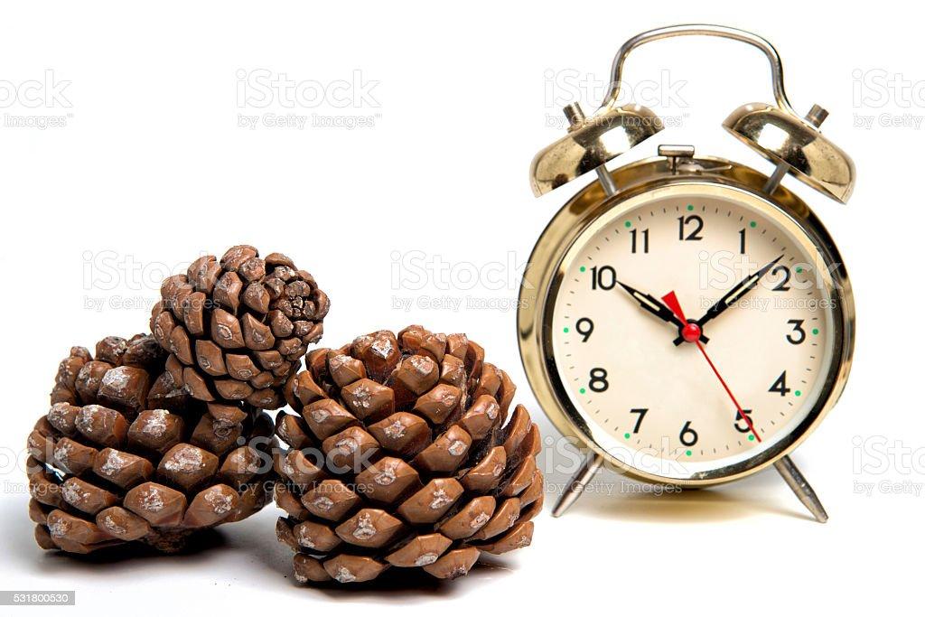 Vintage Alarm Clock With Pine Cones stock photo