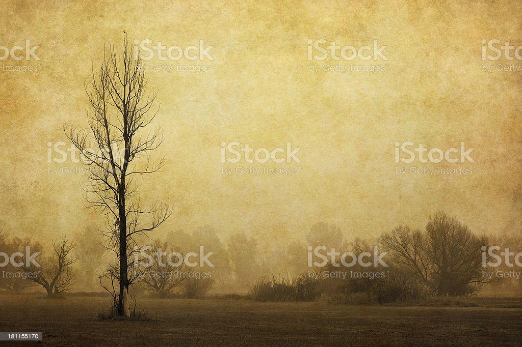 vintage autumn landscape royalty-free stock photo