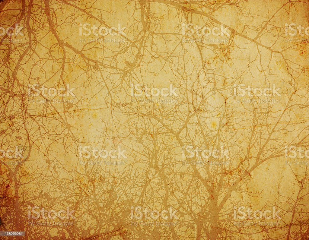vintage background with tree branches royalty-free stock photo