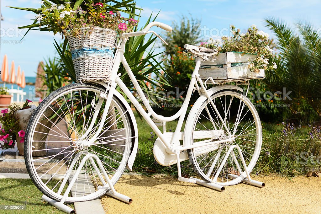 Vintage bicycle and vases parking in the garden stock photo