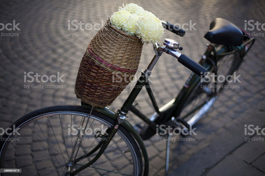 Vintage Bicycle royalty-free stock photo