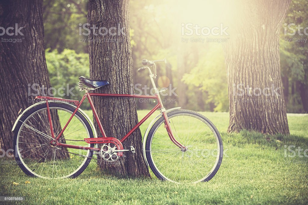 Vintage bicycle waiting near tree stock photo