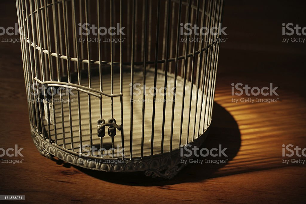 Vintage Bird Cage with Shadow stock photo